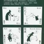 Regeln fürs Füttern von Sikawild
