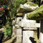 Im Kasugayama-Urwald