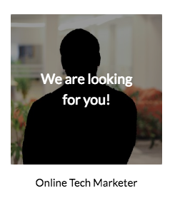 Job Online Tech Marketer Anyline