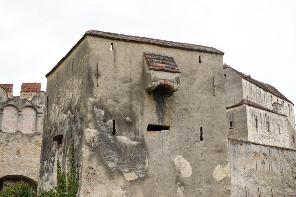 Pechnase Burg Seebenstein