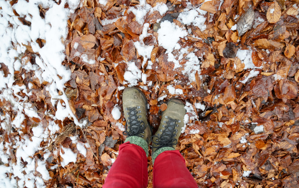 Schnee und Blätter